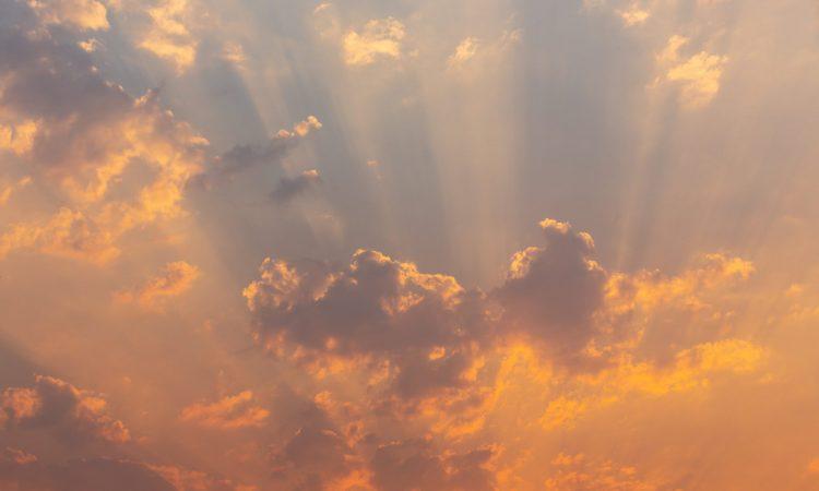 Olmogo Cloude Services
